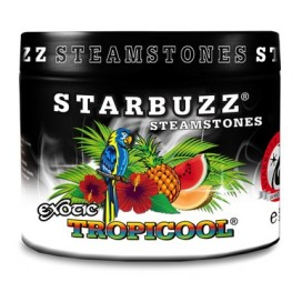 Starbuzz Steam Stones - Tropicool